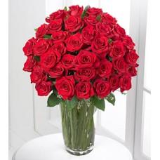 36 Red Roses in Vase