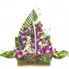 Orchid Basket-1