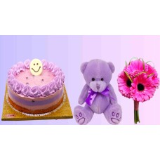 Blueberry Cake , Teddy Bear & Gerbera Combo  With Love