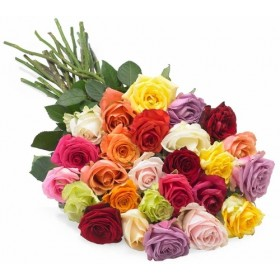 Different color rose for love one in Bangladesh (36)